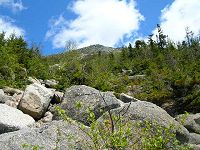 Boulder field on Abol Trail with Tableland at the top