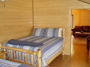 Eagle's Nest -  Second bedroom with two Queen size beds and log frames